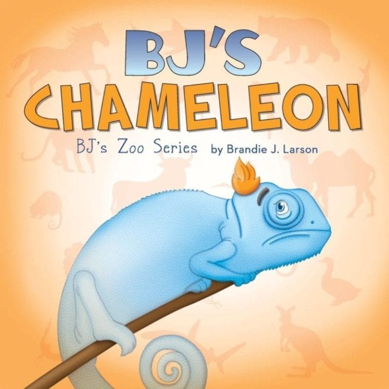 BJs Chameleon BJs Zoo Series | Mindstir Media Book Cover