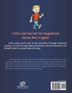 Liams Lost It childrens space book | Mindstir Media Book Cover