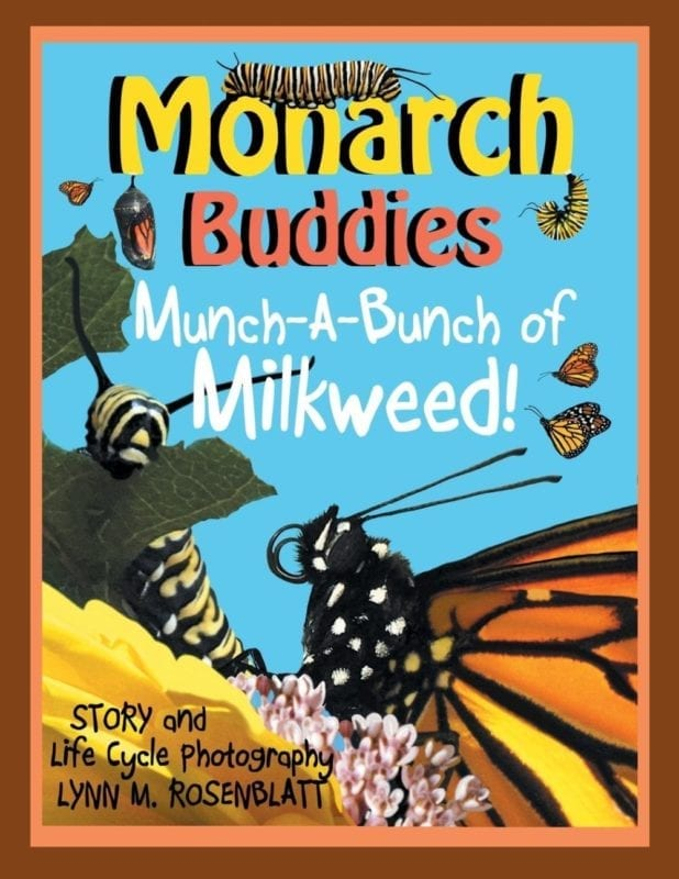 Monarch Buddies | Mindstir Media Book Cover
