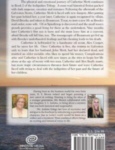 811lfmwT2ML | Mindstir Media Book Cover