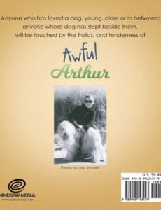 Awful Arthur by author Frederick Mandell | Mindstir Media Book Cover