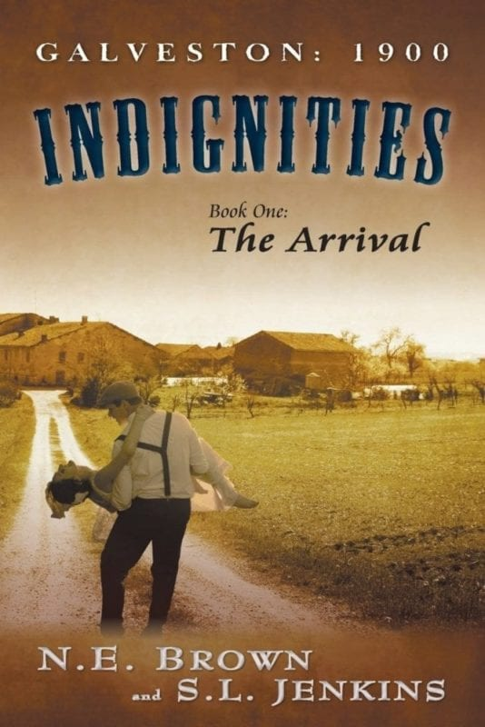 Indignities Book One The Arrival | Mindstir Media Book Cover