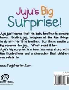 Jujus Big Surprise by tanja | Mindstir Media Book Cover