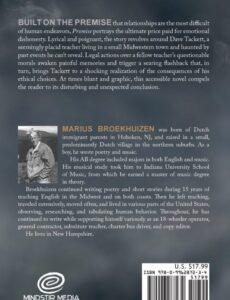 Promise by Marius Broekhuizen fiction author | Mindstir Media Book Cover