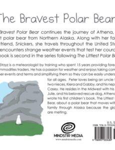 The Bravest Polar Bear book 2 | Mindstir Media Book Cover