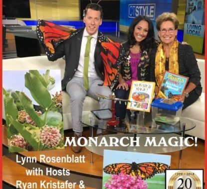 Congrats to Mindstir Media author Lynn Rosenblatt for her recent TV appearance on CT Style ABC Network | Mindstir Media Book Cover