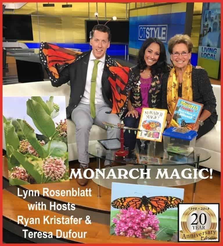 Congrats to Mindstir Media author Lynn Rosenblatt for her recent TV appearance on CT Style ABC Network | Mindstir Media Book Cover