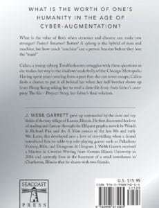 Neon Calico by J Webb Garrett | Mindstir Media Book Cover