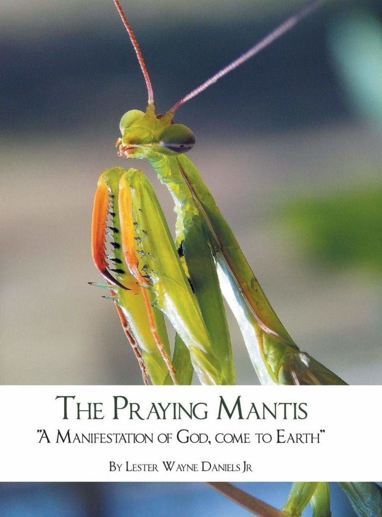 The Praying Mantis A Manifestation of God Come to Earth | Mindstir Media Book Cover