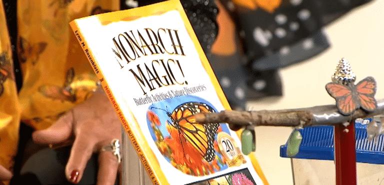 monarc magic | Mindstir Media Book Cover