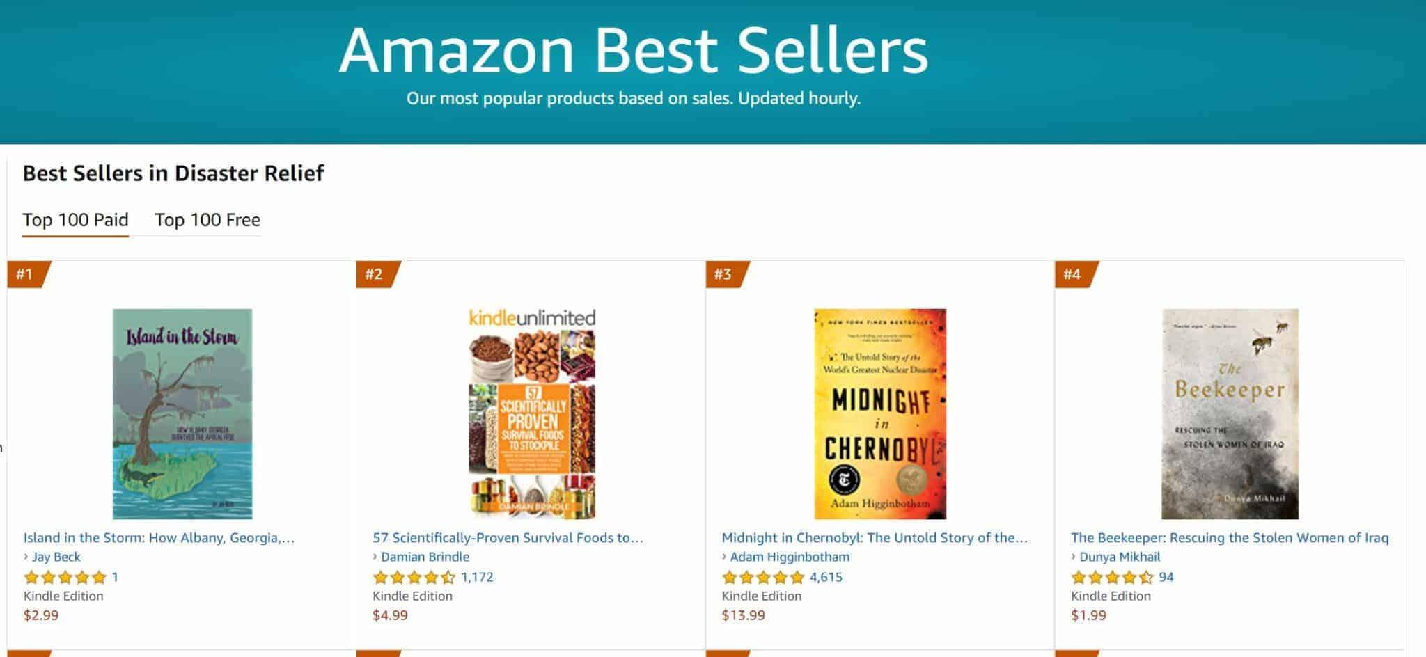 no 1 bestseller disaster relief | Mindstir Media Book Cover