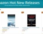 no 1 hot new release disaster relief | Mindstir Media Book Cover